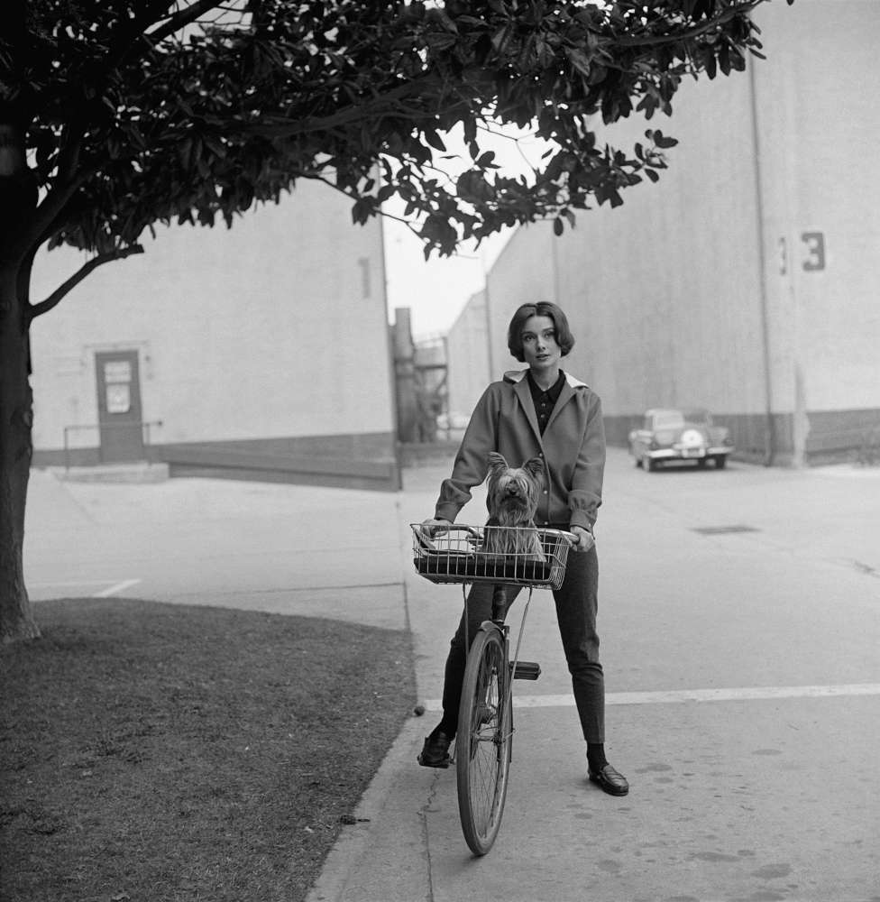 Sid Avery, Audrey Hepburn: On Her Bike with Her Dog Mr. Famous at Paramount Studios, 1957