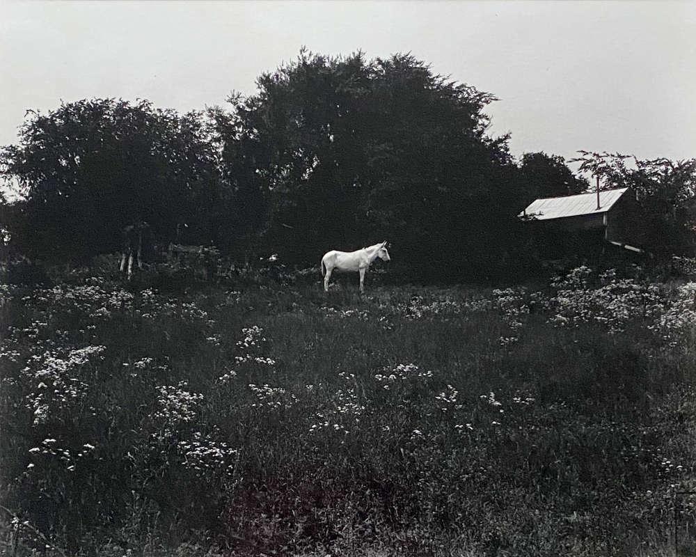 Emmet Gowin, Route 58, Virginia, June, 1965