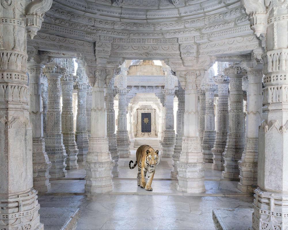 Karen Knorr, Leaving Mithyatva Behind, Adinath Temple, Ranakpur, 2021