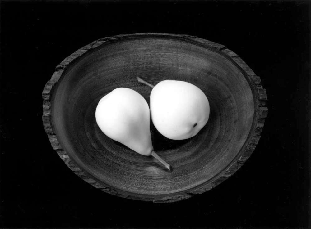 Paul Caponigro, Two Pears, ME, 1999