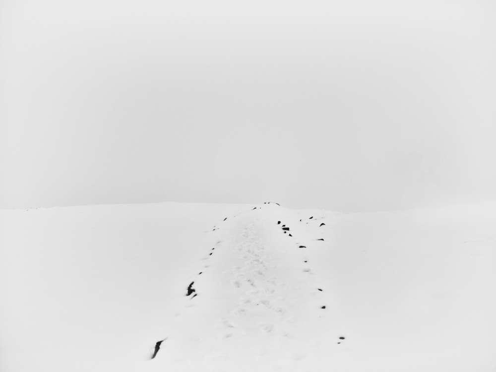 Bastiaan Woudt, Untitled, 2019