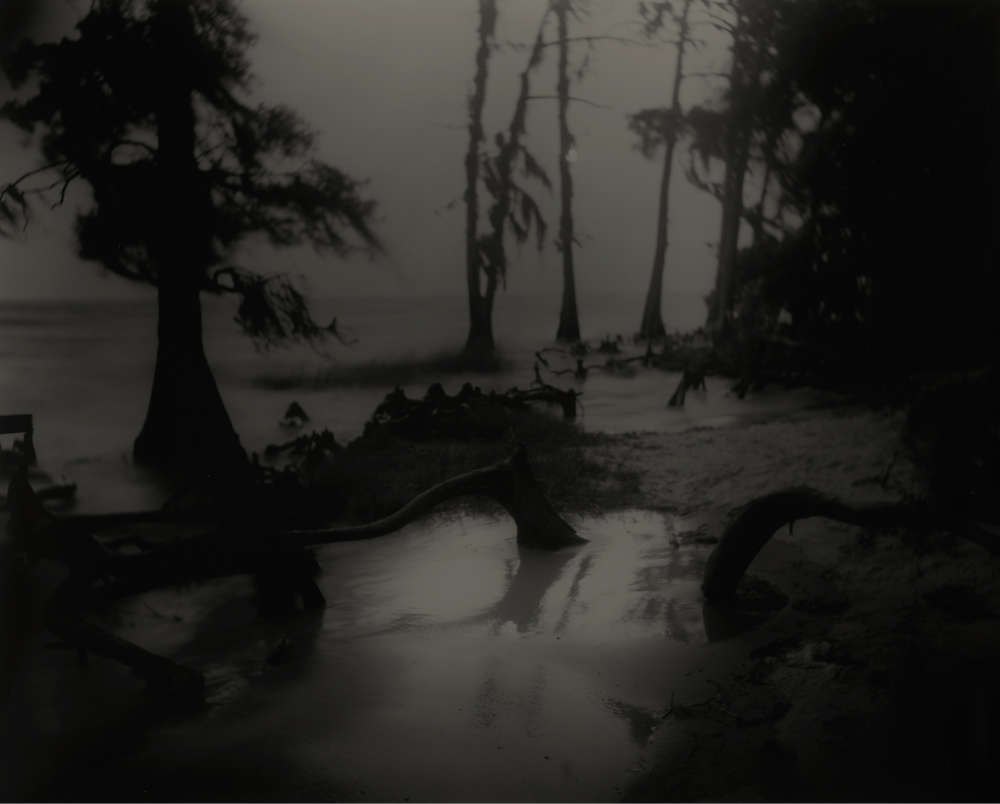 Sally Mann, Deep South, Untitled (Bones II), 1998