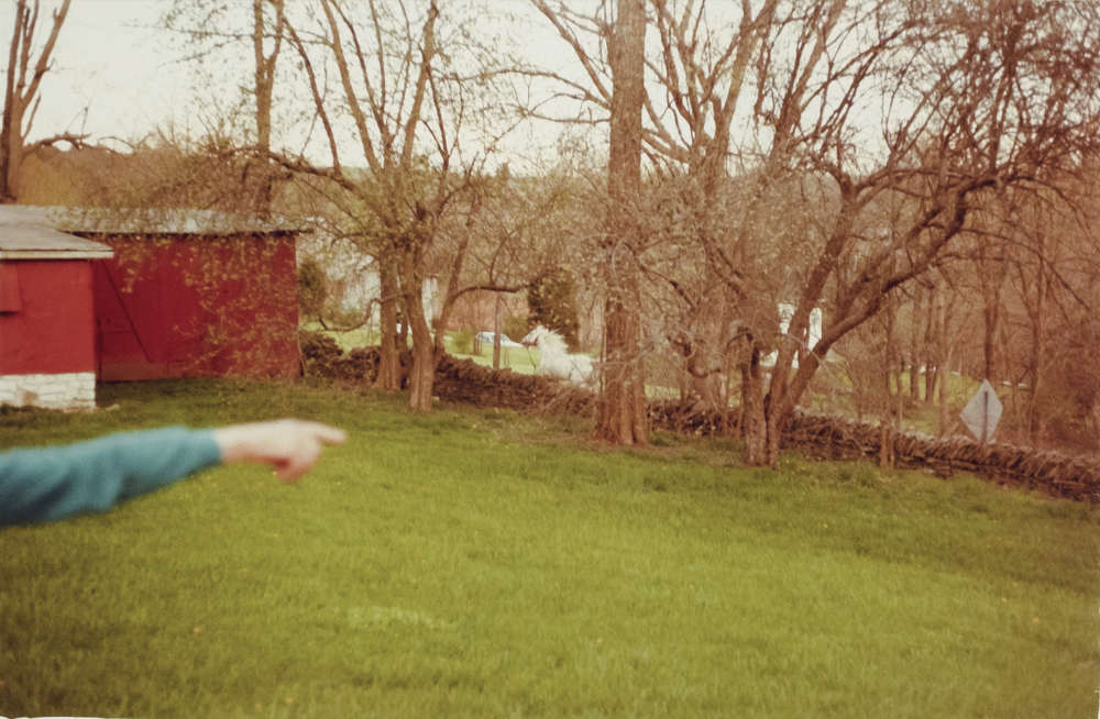 William Eggleston, Untitled (Kentucky), 1983