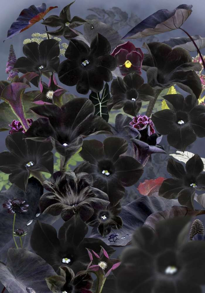Ruud van Empel, Floresta Negra #1, 2018