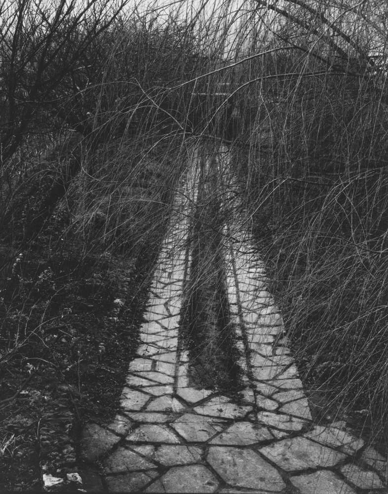 Paul Strand, The Driveway, Orgeval, France, 1957