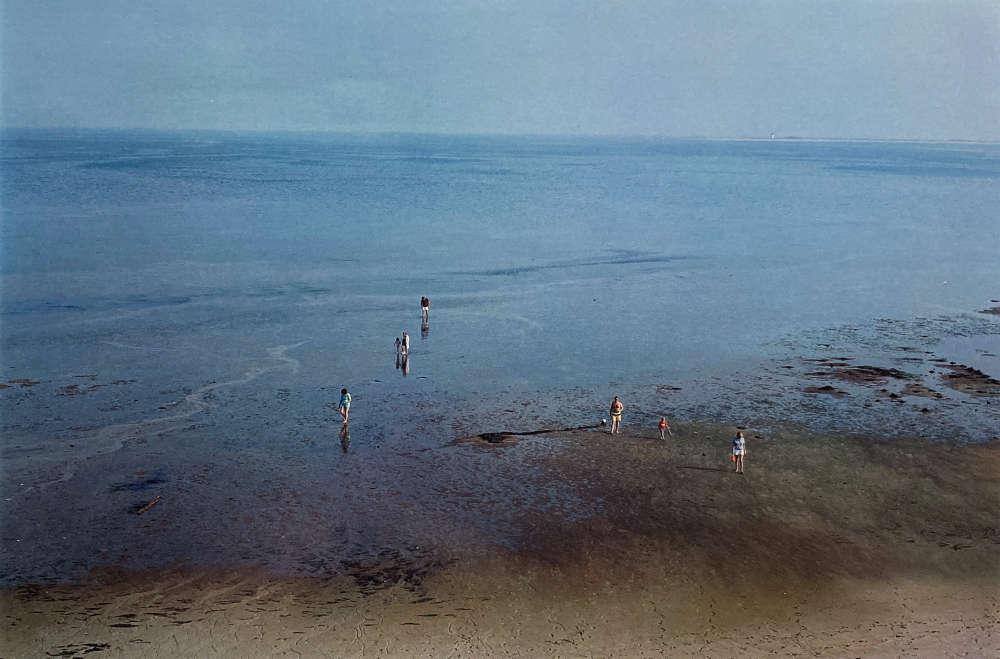 Harry Callahan, Cape Cod, 1987