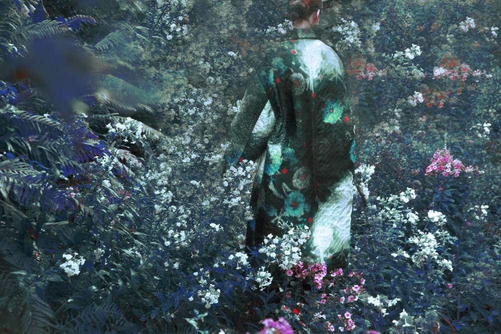 Erik Madigan Heck, Untitled, The Garden, 2018