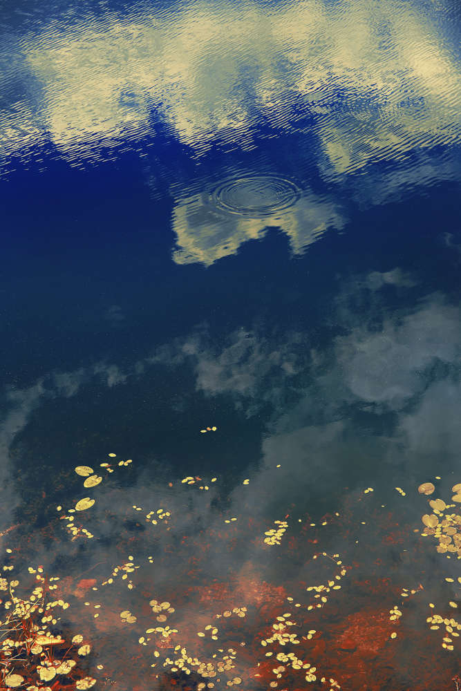 Erik Madigan Heck, Clouds in Pond, The Garden, 2019
