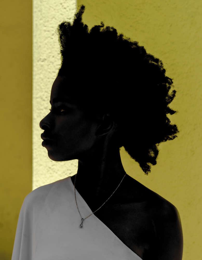 Shawn Theodore, Mnêmosynê, Afrolinquistica - a portrait of Poet Laureate Amanda S. Gorman, 2018