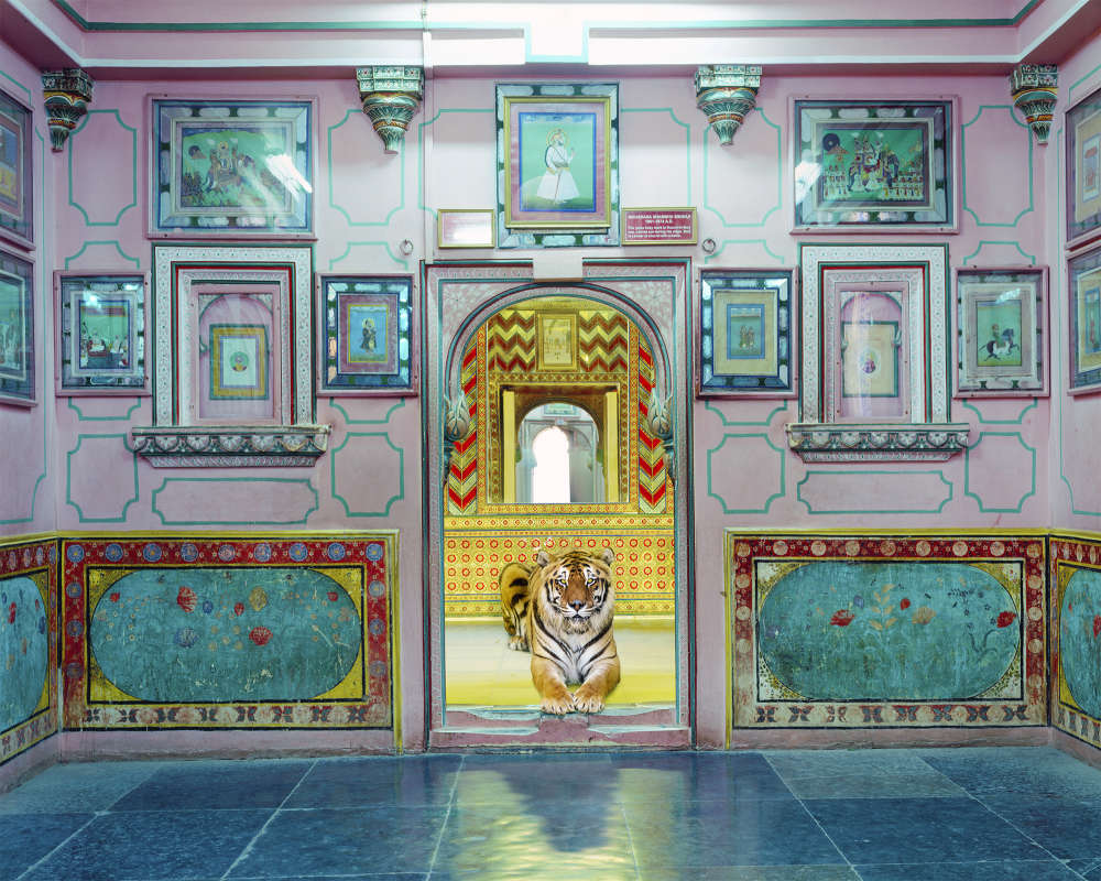 Karen Knorr, Interloper, Sheesh Mahal, Udaipur City Palace, 2019