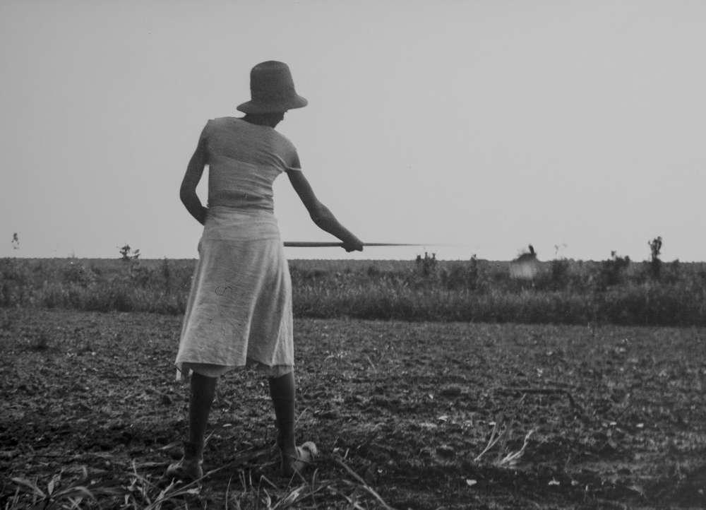 Eudora Welty, Eudora Welty Twenty Photographs Portfolio: Chopping in the Fields, 1980