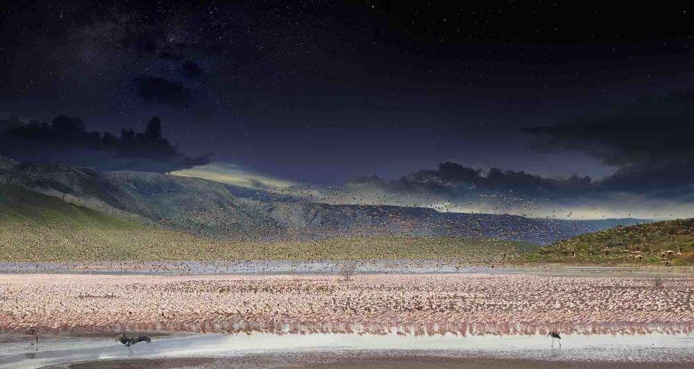 Stephen Wilkes, Lesser Flamingos, Lake Bogoria Kenya, Africa, Day to Night, 2017