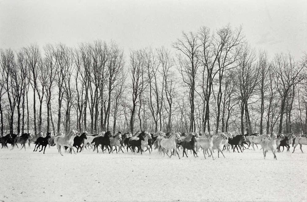 Henri Cartier-Bresson, Gyor, Hungary, 1964