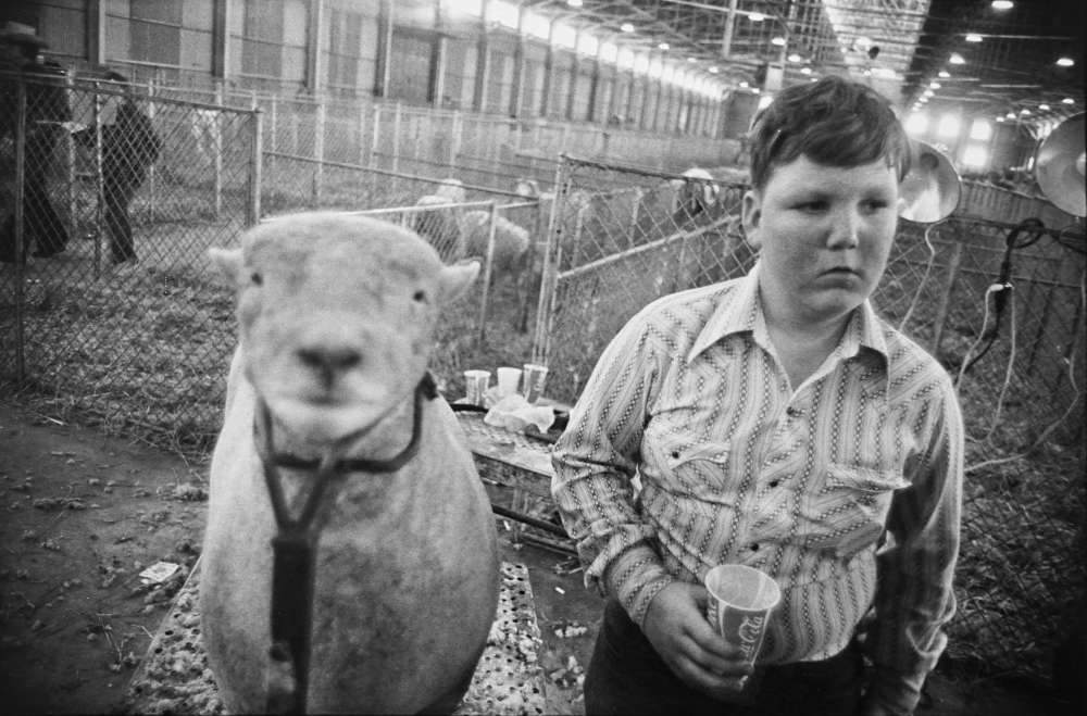 Garry Winogrand, Boy at Stock Show, Fort Worth, Texas, 1975