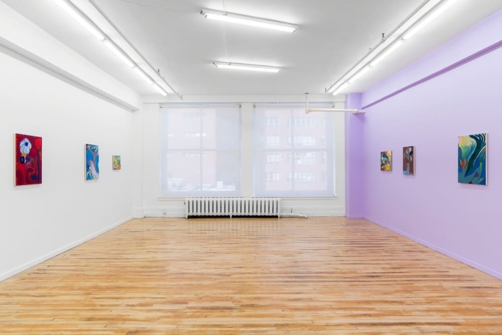 Kristy Luck and Alan Prazniak, River Belly (2018) (installation view). Courtesy of the artists and Projet Pangée.