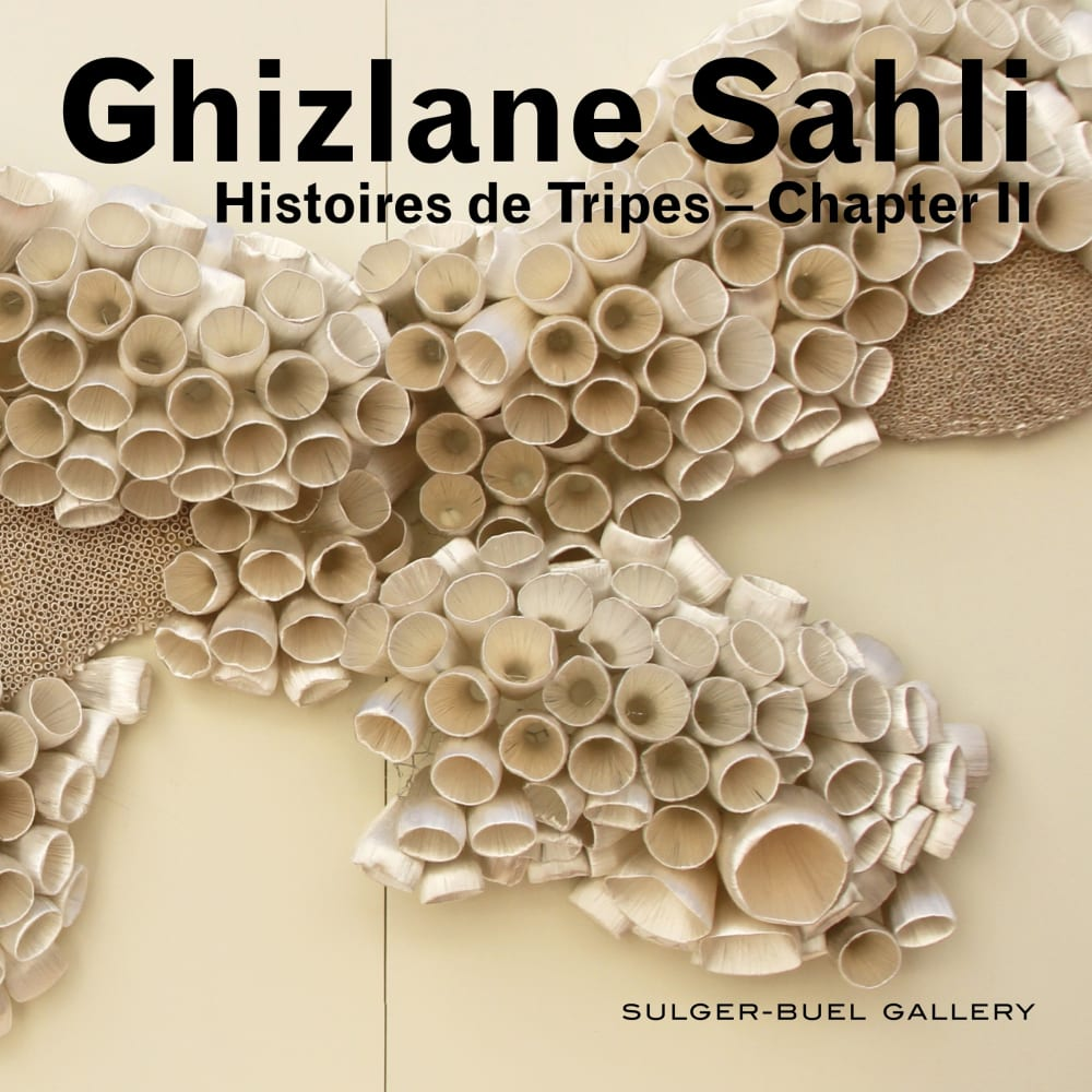 Ghizlane Sahli I Histoires de Tripes 066 (Triptych) (Detail) I 2018 I Silk yarn on plastic and metal I 150 x 250 cm