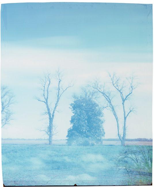 John Chiara, Farrell-Eagles Nest: Clover Hill , 2016