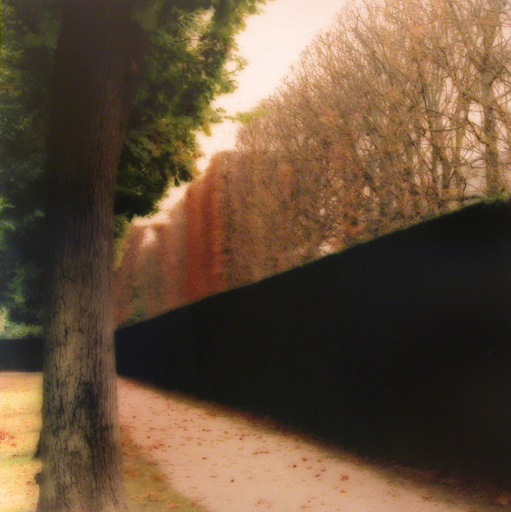 Lynn Geesaman, Parc de Sceaux, France (10-08-10c-9), 2008