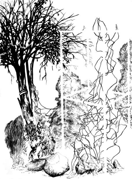 <em>Structures and Armed Trees</em>, 2013