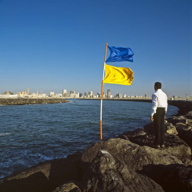 "<span class=""title"">Photographs with Flags<span class=""title_comma"">, </span></span><span class=""year"">2003</span>"