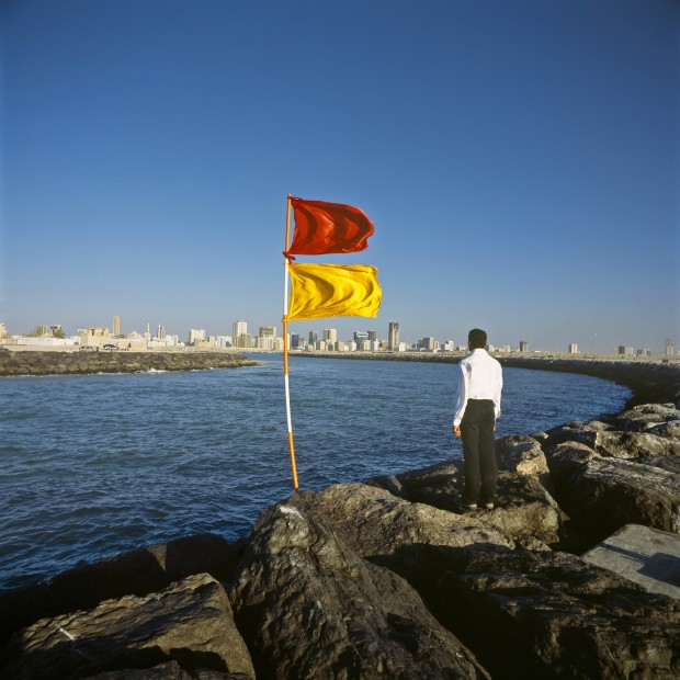 <em>Photographs with Flags</em>, 2003