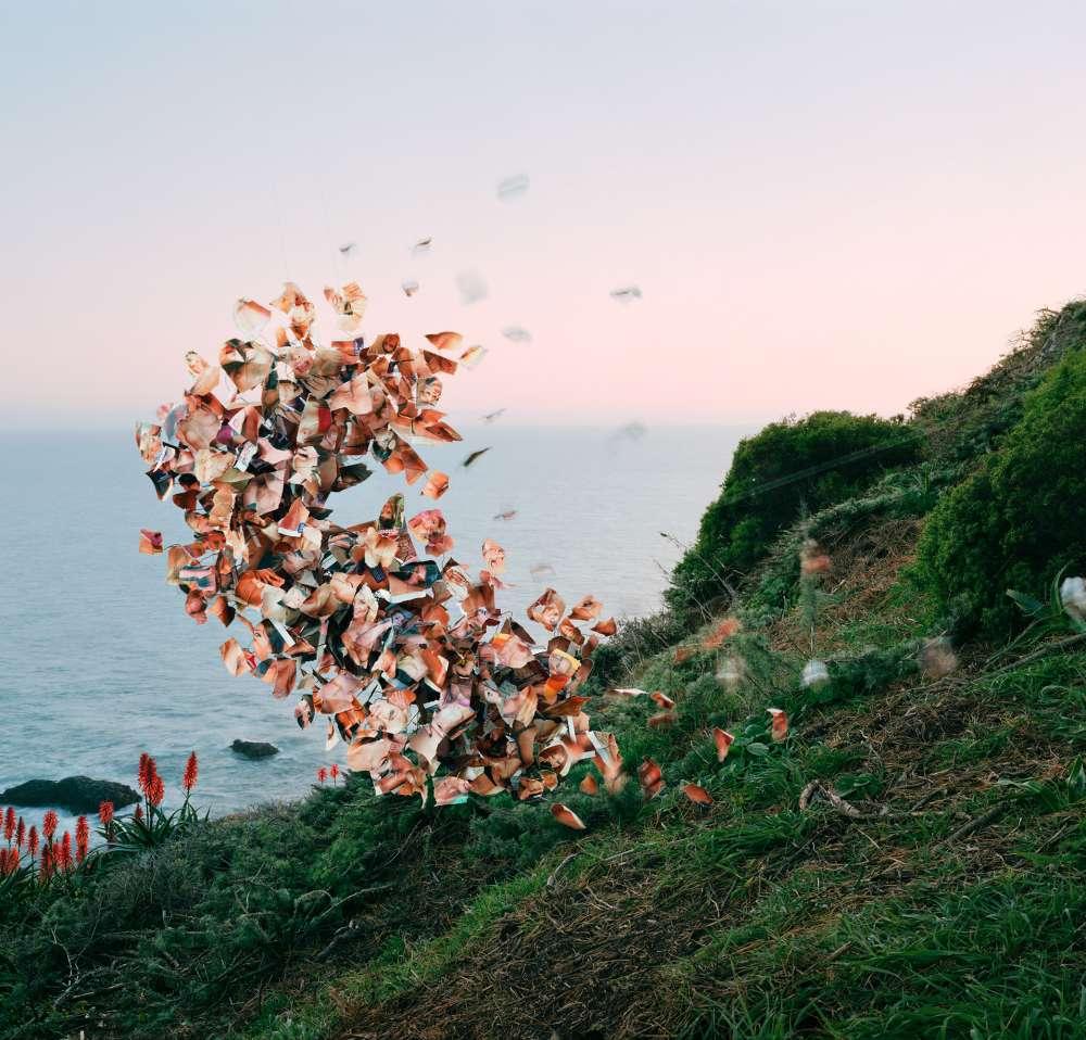 Thomas Jackson: Emergent Behavior, July 21 - September 16, 2017