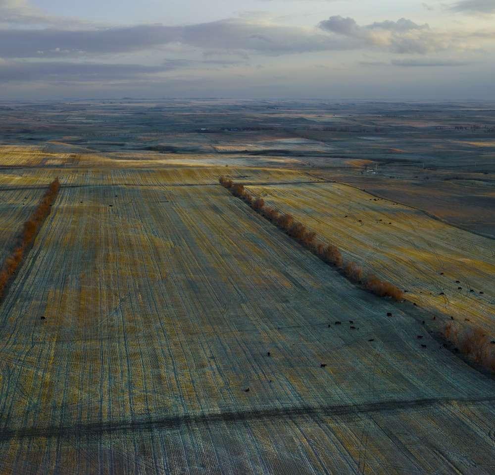 Andrew Moore, Dusky Fields, Mckenzie Country, North Dakota, 2013 - Artwork 27120
