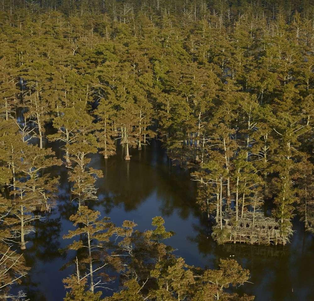 Andrew Moore, Big Blind, Beaver Dam Lake, Tunica, MS, 2014