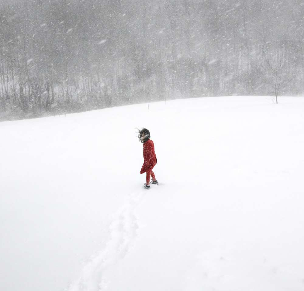 Cig Harvey - Scout in the Blizzard, Rockport, Maine