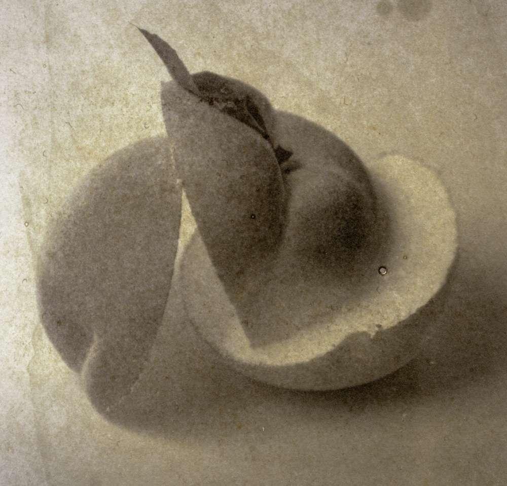 Matthew Brandt - Peaches, 12B