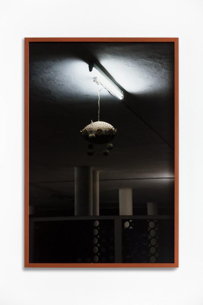 Daniel Steegmann Mangrané, Fog Dog (Night Butterfly), 2020