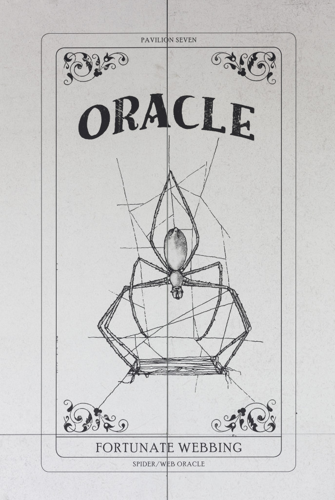 Spider/Web Pavilion 7: Oracle Readings, Weaving Arachnomancy, Synanthropic Futures: At-ten(t)sion to invertebrate rights!