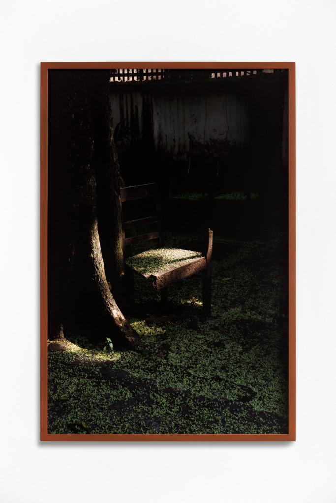 Daniel Steegmann Mangrané, Fog Dog (Flowers on Chair), 2020
