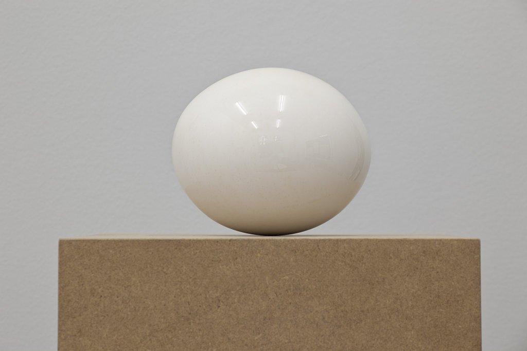 Ostrich Egg, Polished / Straußenei, poliert