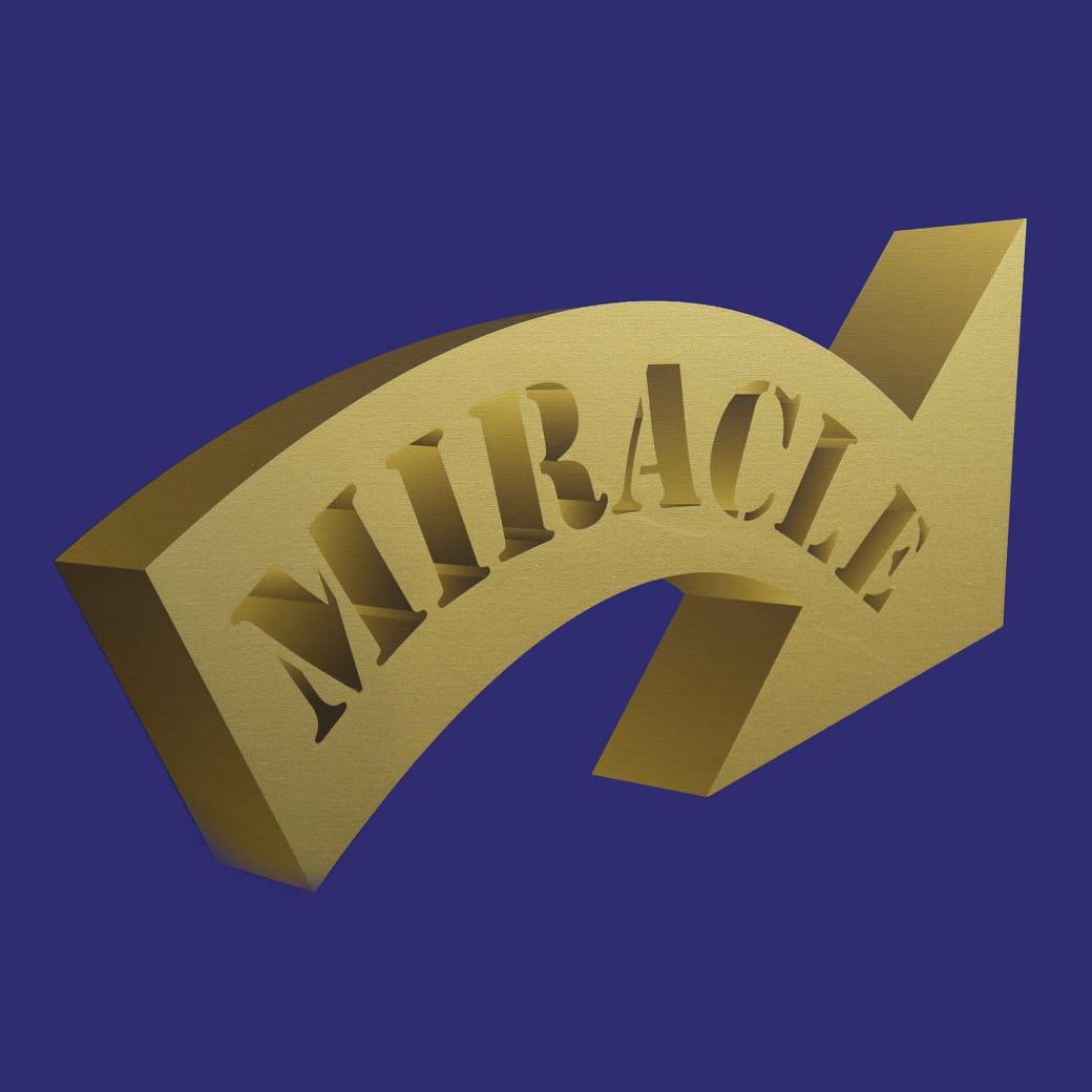 Nancy Dwyer, Royal Miracle V, 2017