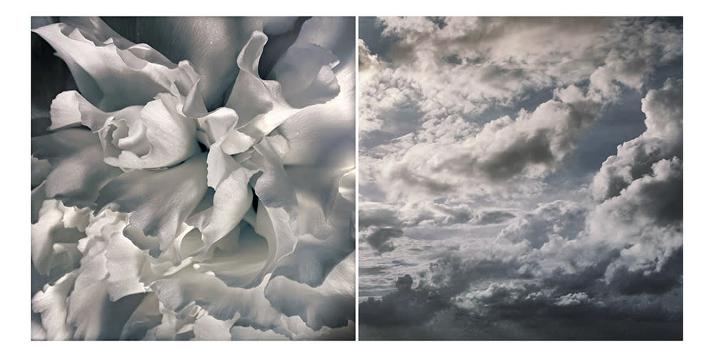 The Metaphorical Image – Works of Julie Brook Alexander