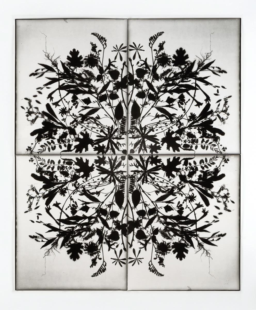 AIPAD-Contemporary Photography-Based Art