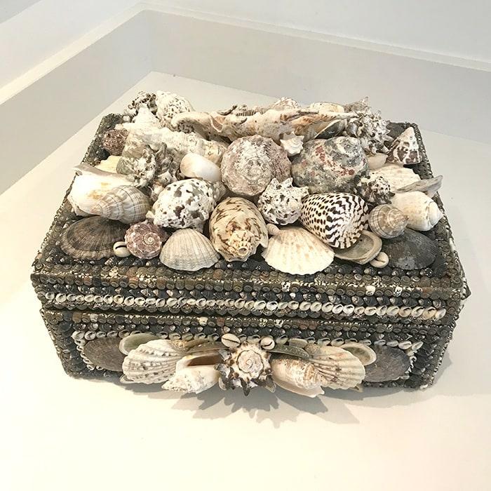 Large Shell box by Carolyn Brookes Davies