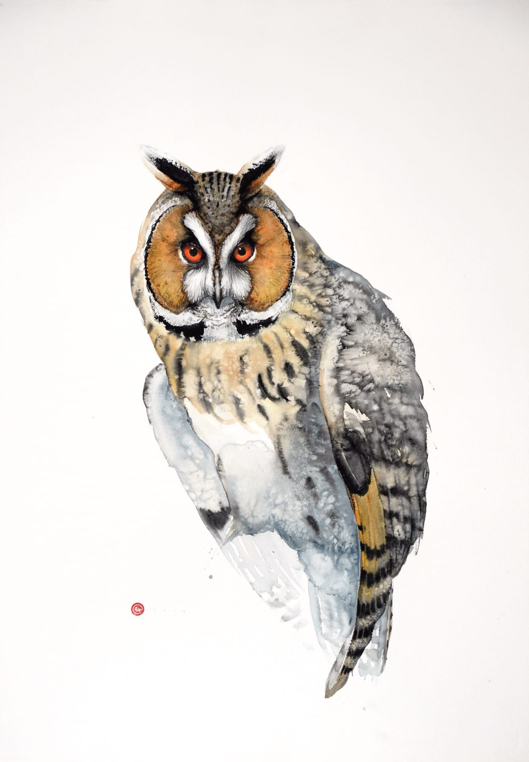Long-eared Owl, watercolour on Arches watercolour paper, 106 x 75 cms