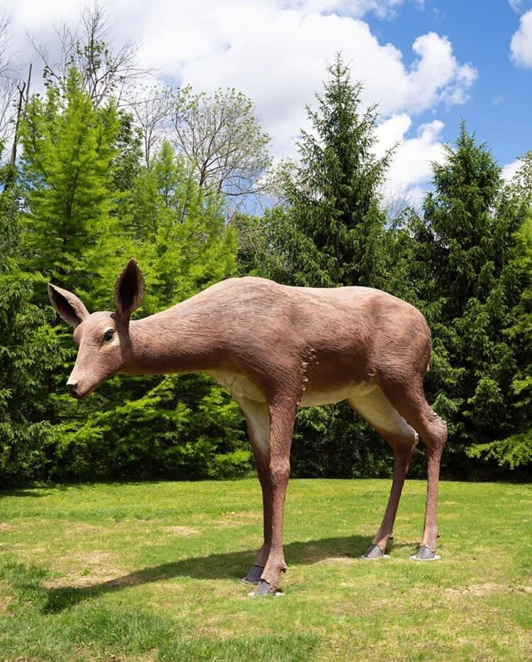 Tony Tasset, Deer, 2015, Collection of Gregg Rechler and Mitchell Rechler, Courtesy of the artist and Kavi Gupta, Chicago , Photo: Christopher E. Manning