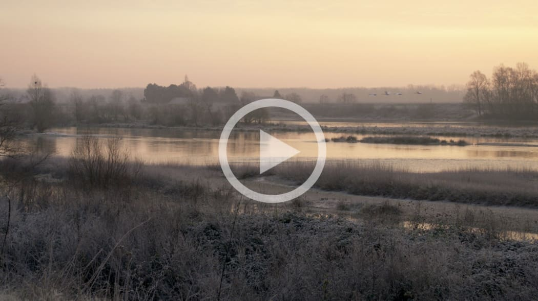JEFFREY BLONDES | Loire River, Chouzy East - 12 Minute Film