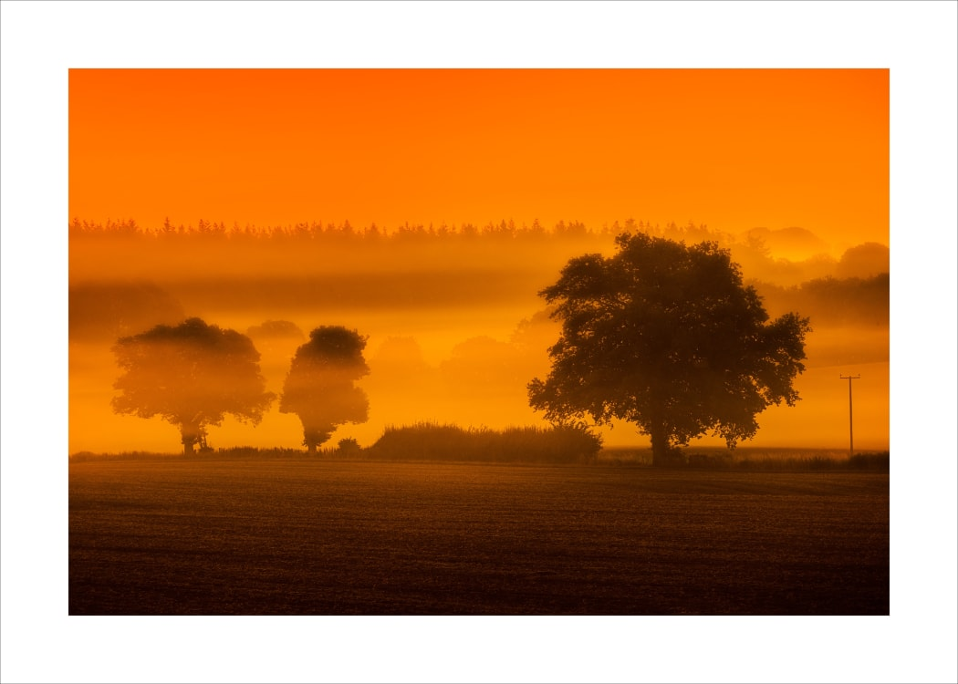 Dawn breaking close to the Savernake Forest in Wiltshire.
