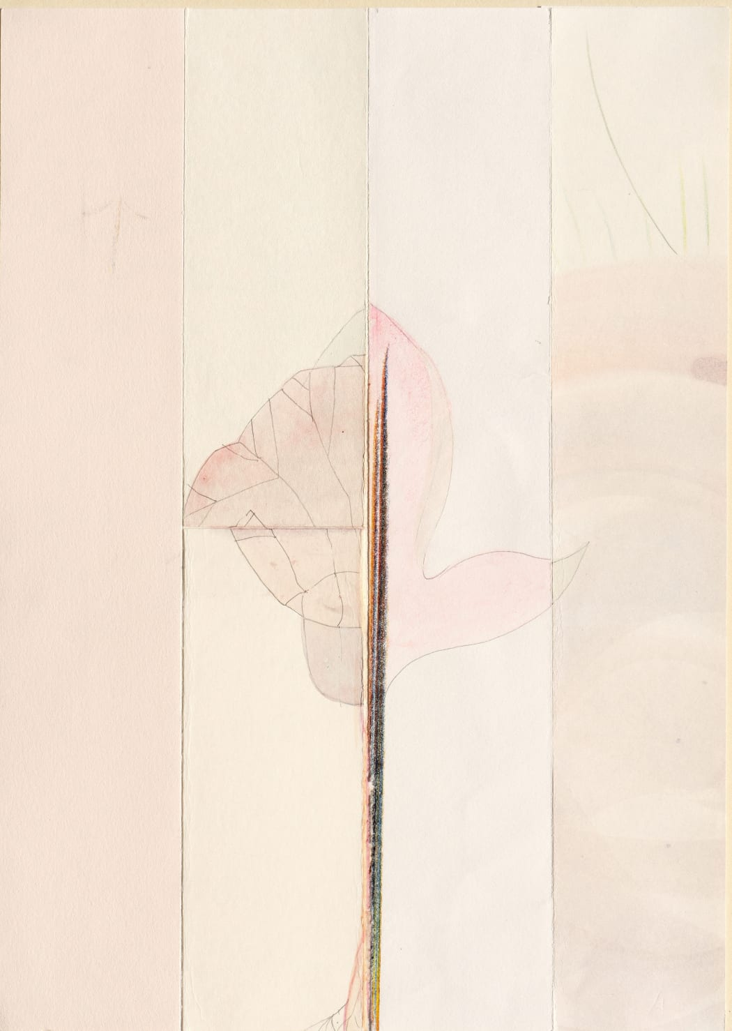 Season: Fictional Plant 26, 2020, Pencil and watercolor on assorted paper, 29.7 x 21 cm, Signed and dated (Unframed).