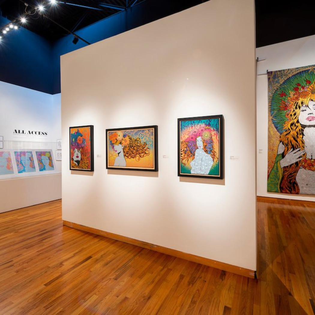 """Chuck Sperry - """"All Access"""" at the Fort Wayne Museum of Art"""