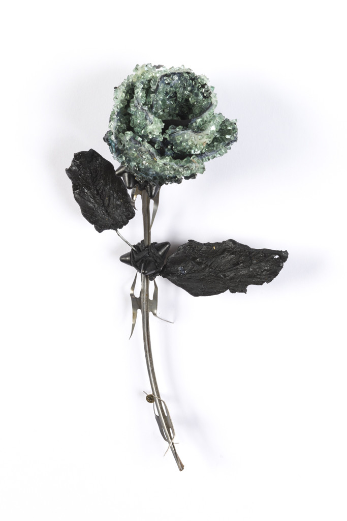Lucien Shapiro, Rose with Leaves, 2017