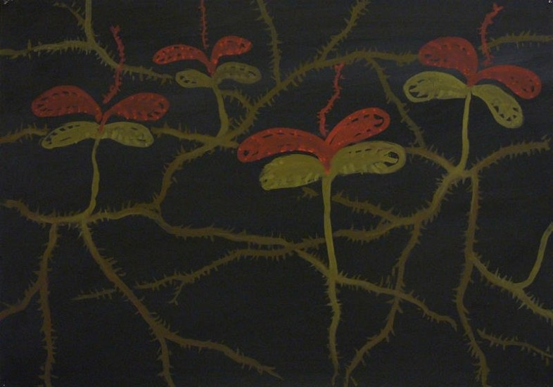 <em>#3 from the series SUSPICIOUS GARDEN</em>, 2010