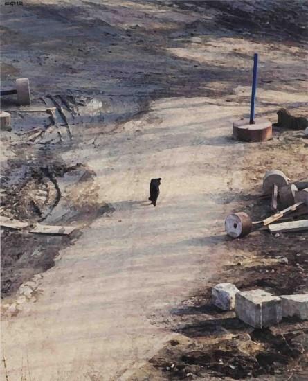 <p><span>Semyon Faibisovich</span><br /><span>Long Shadows from the cycle Dog's life, 2012</span></p>