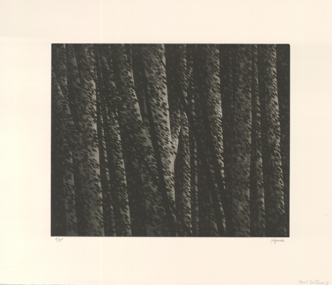 Forest Nocturne II, 2000