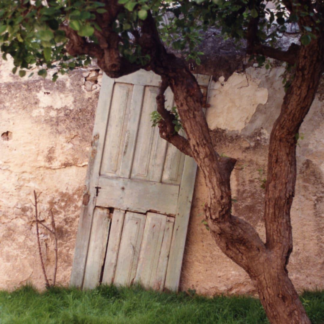 Dorothy Bohm, Provence, 1990