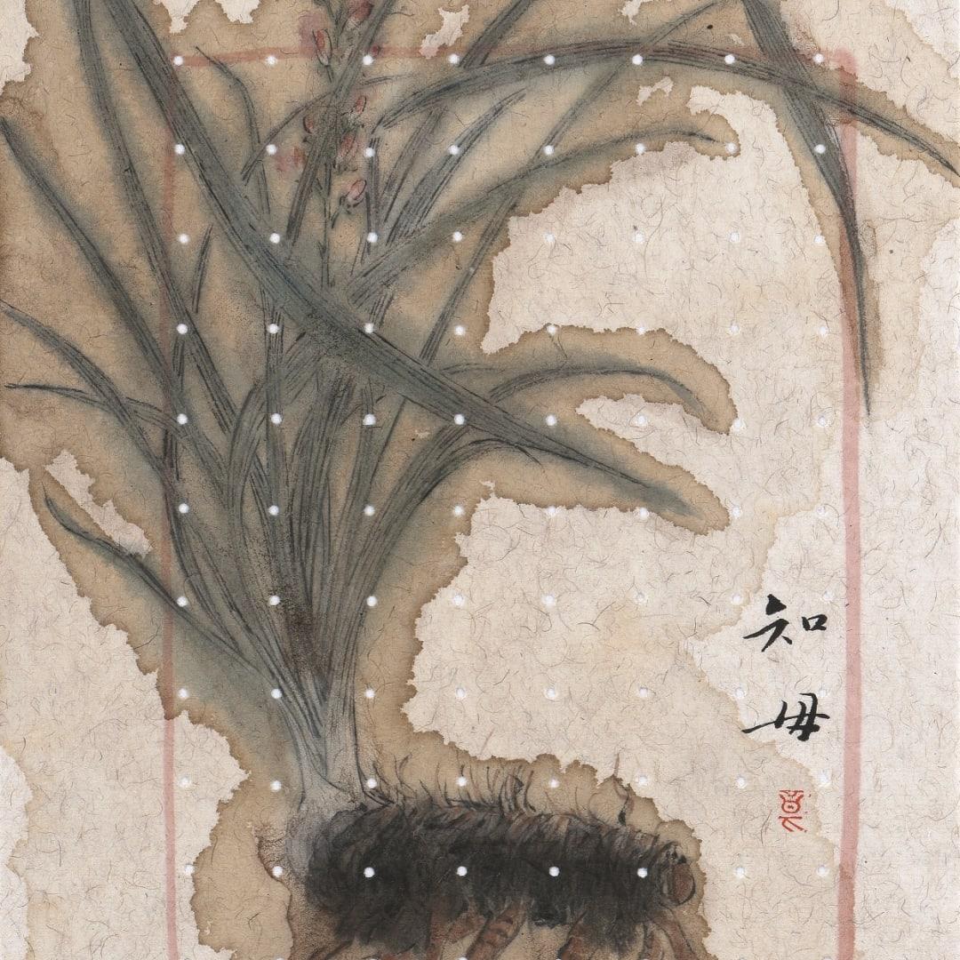 Zhang Yanzi 章燕紫, Dabuyin Pills 大補陰丸, 2014-2015
